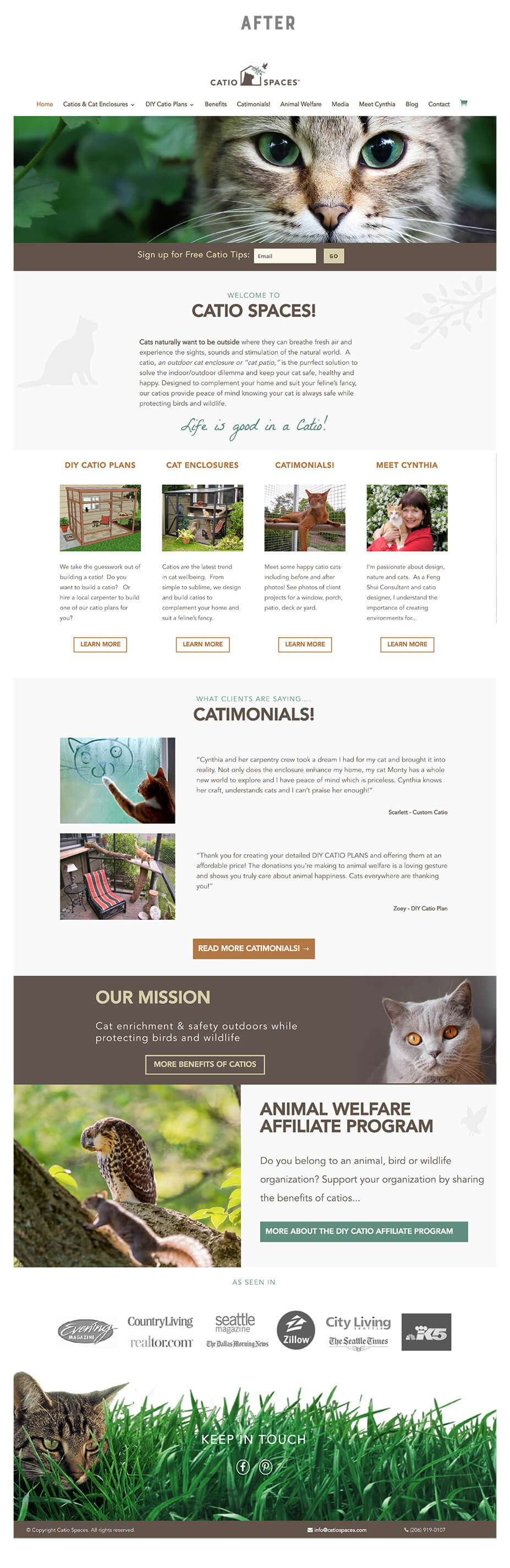 Catiospaces.com website after branding