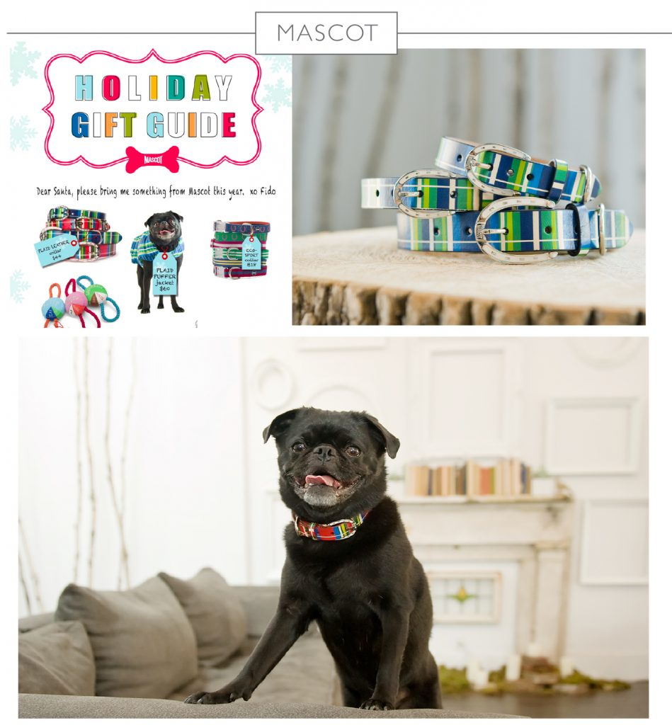 photography for mascot pet brand by j.nichole smith